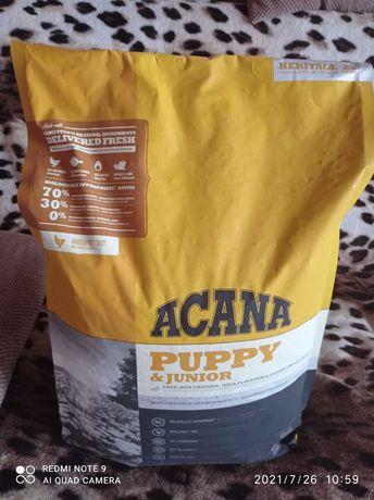 Акана ,  корм для собак, холистик