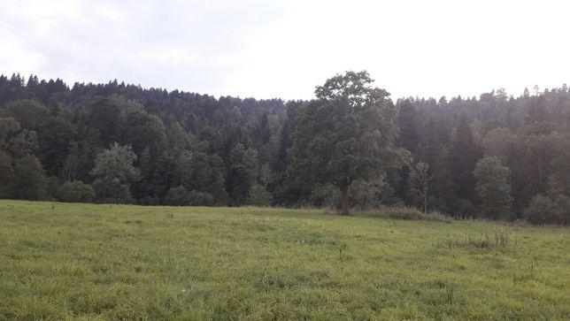 Sprzedam działkę zalesioną w Bieszczadach 10 hektarów