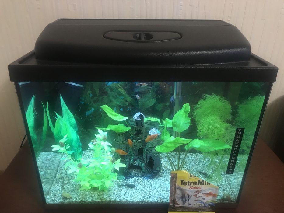 Продам аквариум 60 л Ирпень - изображение 1