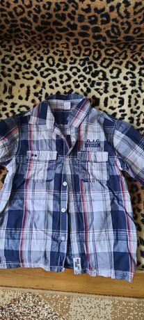 Рубашки/сорочки/теніски на хлопчика ( розміри від 7 до 11 років)