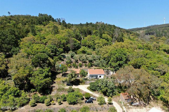 Quinta em Monchique, Algarve