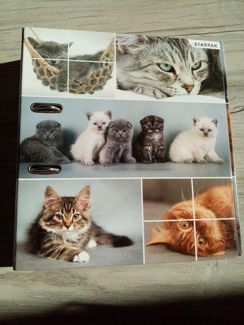 ładny segregator kotki biurowy