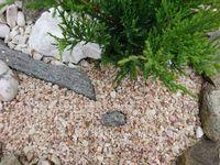 Grys kolorowy , drobny 2-8mm kamienie ogrodowe lastryko multikolor