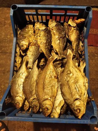 Продам озерну рибу,сушену в печі.