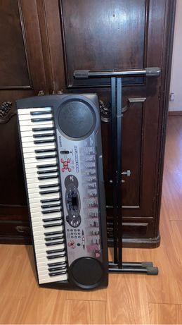 Orgão Casio LK 35 ( Usado 2x)