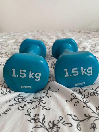 Pesos Musculação 1,5kg