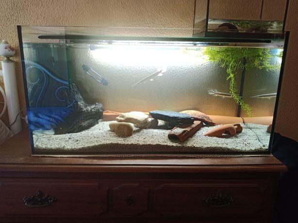 Troco aquário de 128L