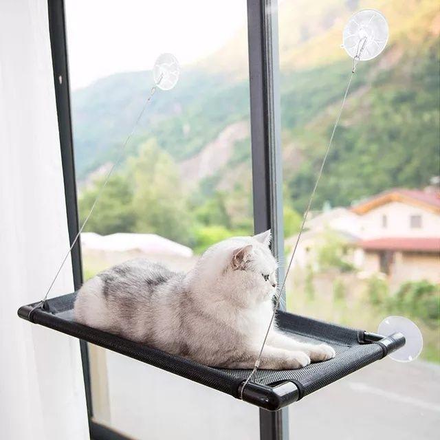 Cama de janela para gato