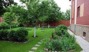 Садовник. Стрижка деревьев и виноградника.