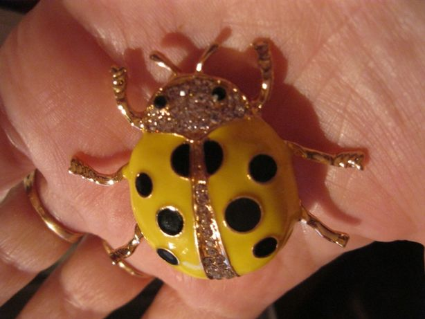 девочке детская веселая брошка желтый жук божья коровка жучок брошь