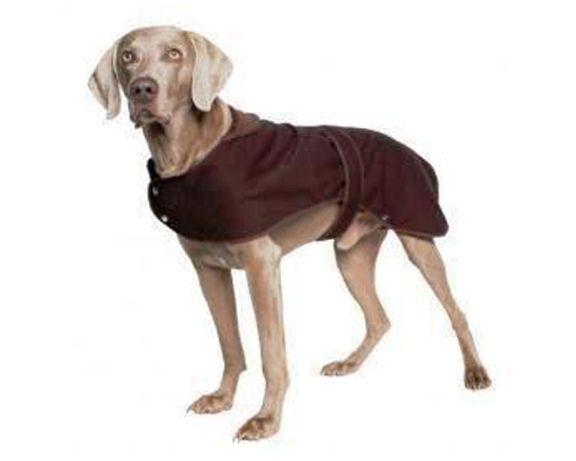 Impregnowany caloroczny płaszczyk dla psa XL i L