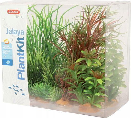 ZOLUX Dekoracja roślinna PLANTKIT JALAYA model 4