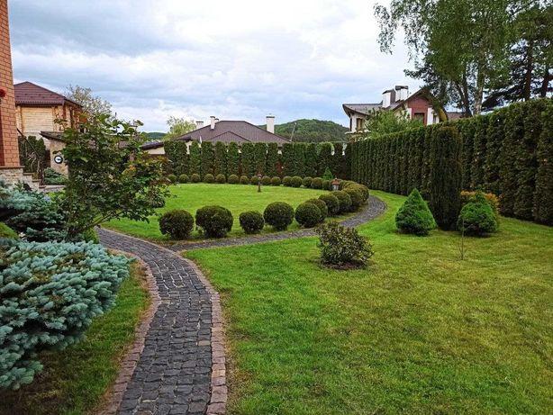 Озеленення території, стрижка рослин, газони, обрізка дерев.