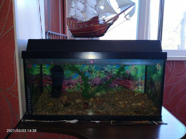 Продам акваріум на 50 літрів