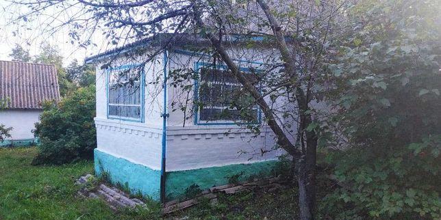 Будинок у селі Василиха