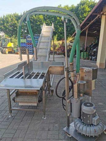 Maszyna do obierania kapusty powietrzem