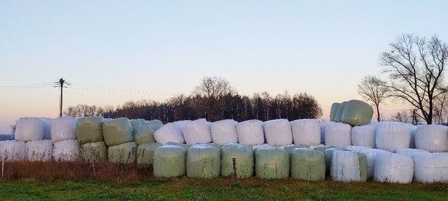 Sprzedam płody rolne(sianokiszonka,słomę, zboże do siewu)