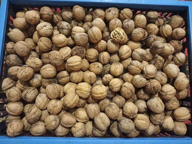 Продам орехи. Продам горіхи
