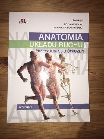 """Zeszyt ćwiczeń """"Anatomia układu ruchu"""" Zofia Ignasiak"""