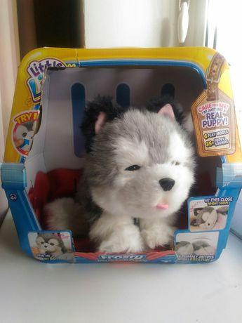 Интерактивный щенок хаски. Оригинал