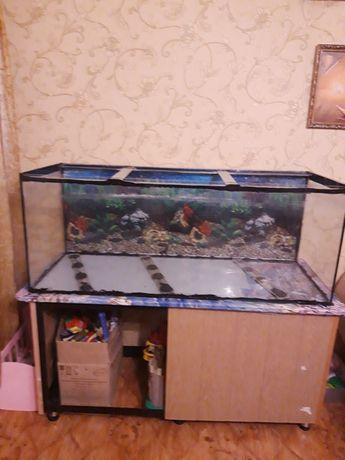 Продажа аквариума