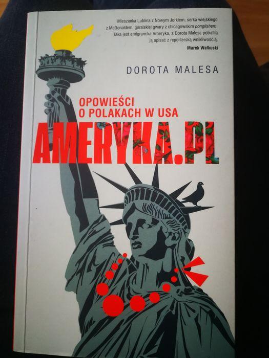 Książka Ameryka.pl - Dorota Malesa Wrocław - image 1