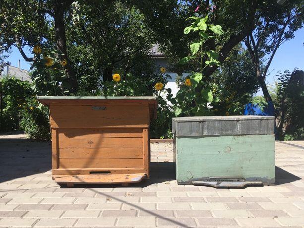 Улики для пчёл | Пчелиные улья
