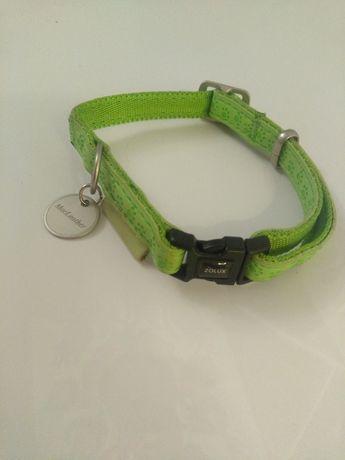 Zielona obroża dla psa kota MacLeather