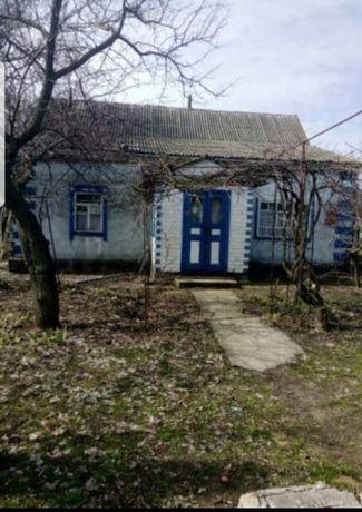 Сдам в аренду дом в Семёновке (Криничанский район) с посл. выкупом ksu