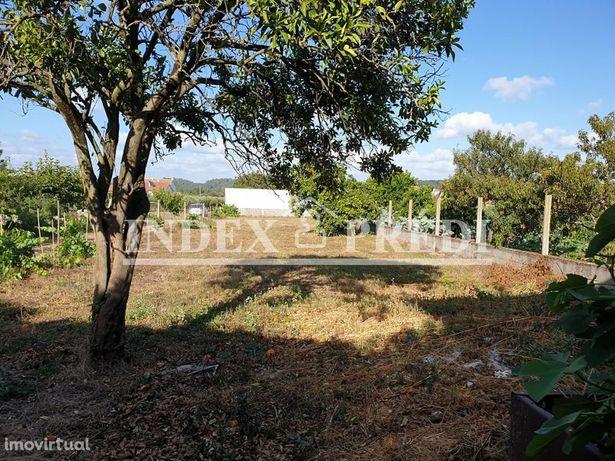 Moradia Isolada T3 com quintal