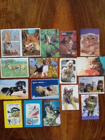 Календарики. Животные, птицы