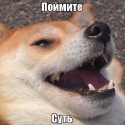 Выгул собак, да и не только. Одесса