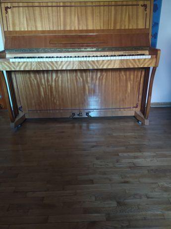 Pianino w ciągłym użytkowaniu, głośnik piec 1200W