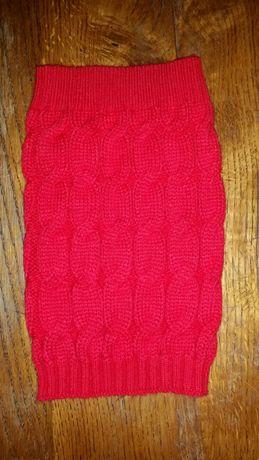 Czerwony sweterek dla małego pieska