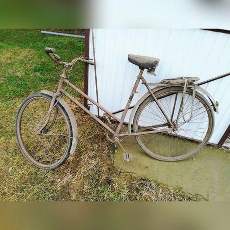 Stary rower damka.