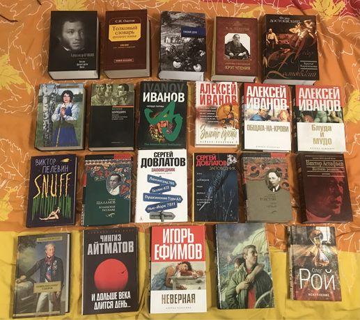 Мини библиотека русской литературы. 22 книги.