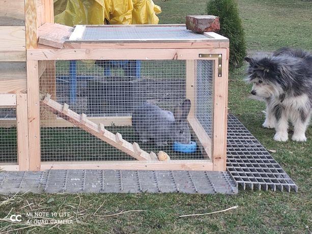 Klatka dla królika,królików