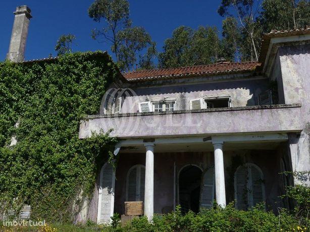 Quinta da Pedra Branca para reabilitação, inserida em lot...