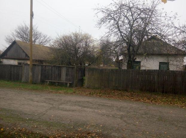 продам дом в Черниговской области с. Вовчок