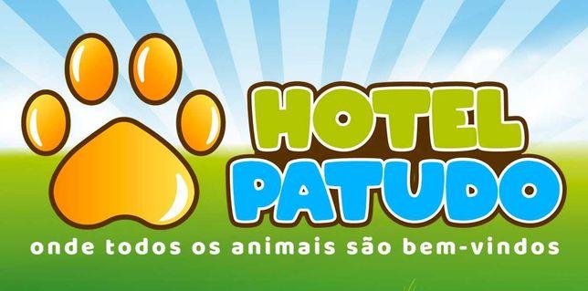 Pet Sitting - Hospedagem de Animais - Hotel Patudo