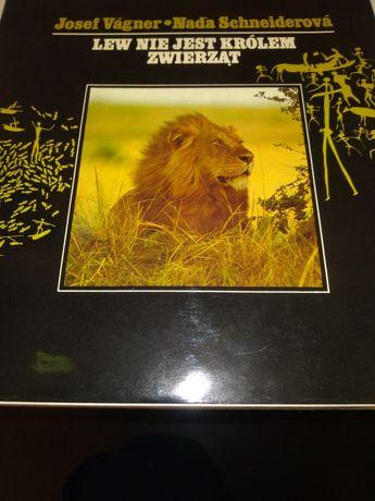 """Album """"Lew nie jest królem zwierząt"""""""
