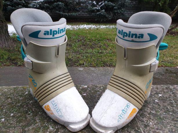 Alpina - buty narciarskie