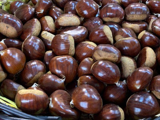 Vende-se castanhas judias (outubro/novembro)