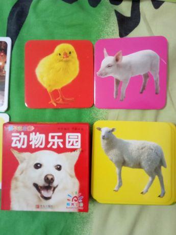 Карточки с домашними животными на китайском языке