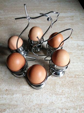 Galinhas de ovos