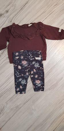 Zestaw bluza i legginsy newbie 62