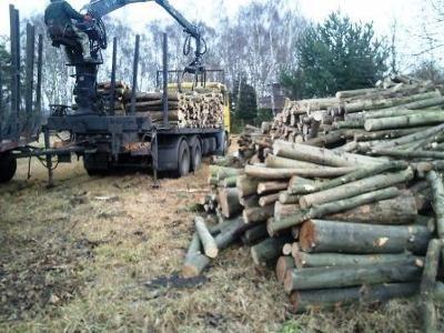 Drewno kominkowe opałowe do kominka DOWÓZ GRATIS!!