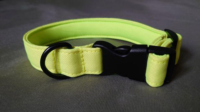 Neonowa obroża dla psa z podszyciem miękka