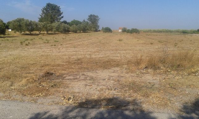 Terreno 1 hect, Valdera ( Palmela - Pinhal Novo )