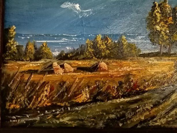 Obraz olejny na płótnie stara rama wym 62 /47 malarstwa T. Chołyka